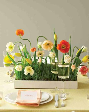 svadobna-jarna-zahrada