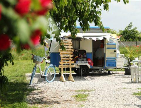foto karavan na svadbu