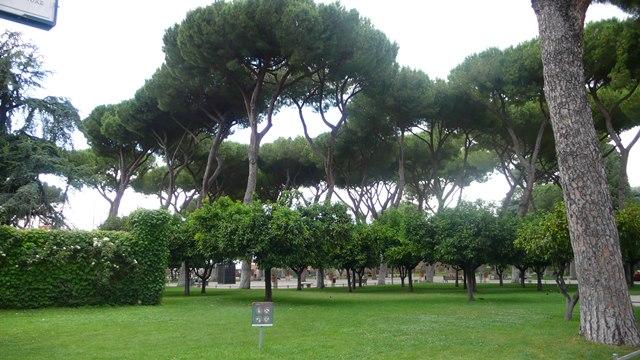 Rim, fotenie v parku