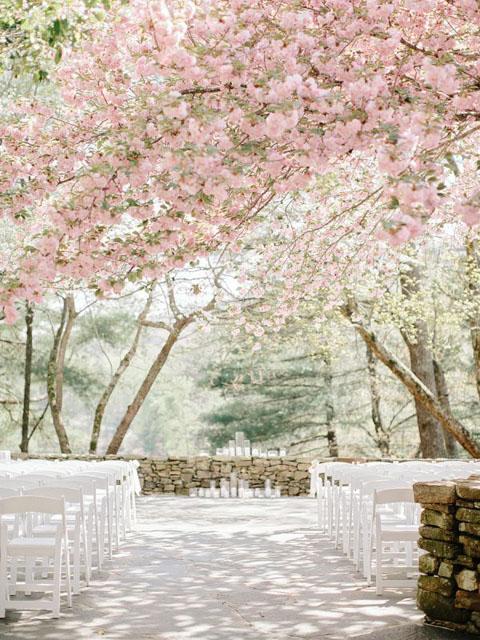 jarna_svadba_v_zahrade