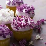 kvetinkove_jarne_cupcakes