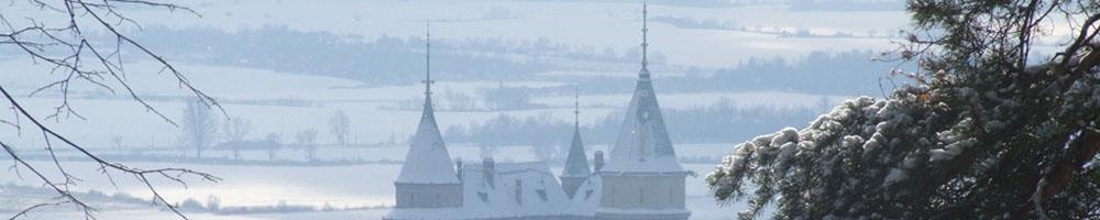 svadba_v_zime